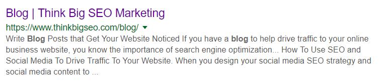 Think Big SEO Marketing - SEO For Beginners Blog